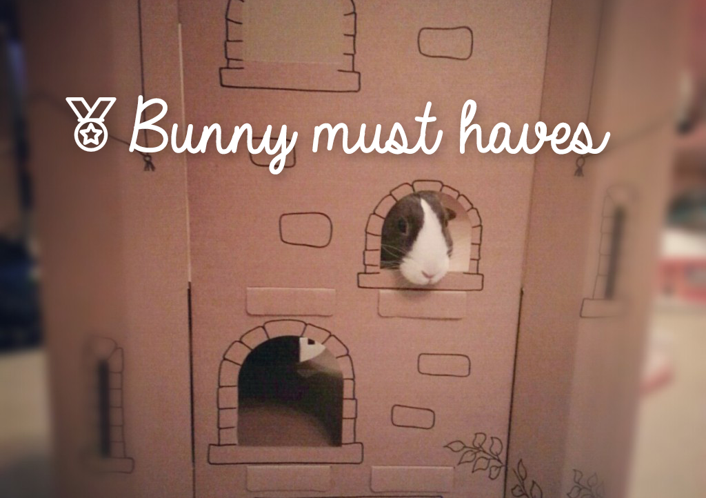 My bunny must-haves