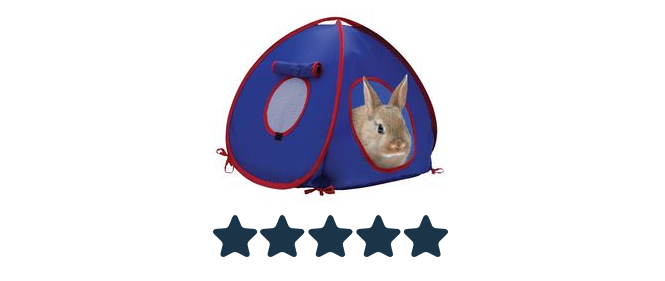toy 2 tent